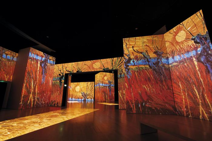 Mostra Van Gogh Alive - The Experience